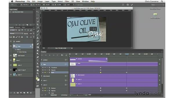 Animating layer styles and effects: Design the Web: Video Graphics and Animation