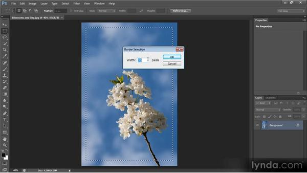 Selecting the border of an existing selection: Photoshop CS6 Selections and Layer Masking Workshop