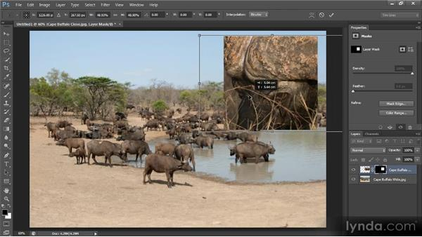 Unlinking an image from a mask: Photoshop CS6 Selections and Layer Masking Workshop