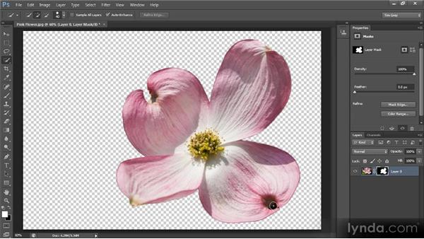 Select, then paint: Photoshop CS6 Selections and Layer Masking Workshop
