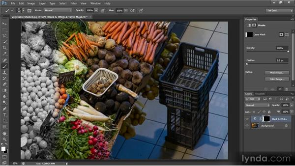 Shades of gray: Photoshop CS6 Selections and Layer Masking Workshop