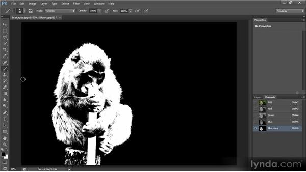 Advanced mask cleanup: Photoshop CS6 Selections and Layer Masking Workshop