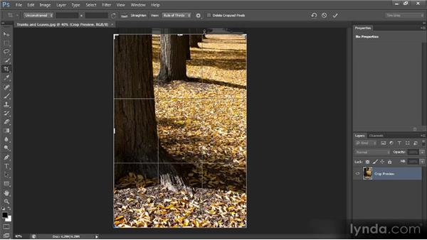 Crop tool cleanup: Photoshop CS6 Image Cleanup Workshop