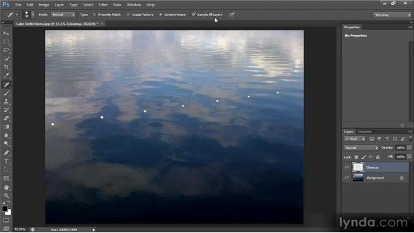 The Spot Healing Brush tool: Photoshop CS6 Image Cleanup Workshop