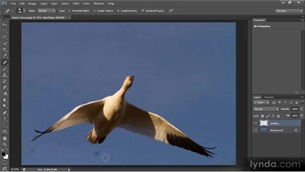 Basic spotting: Photoshop CS6 Image Cleanup Workshop
