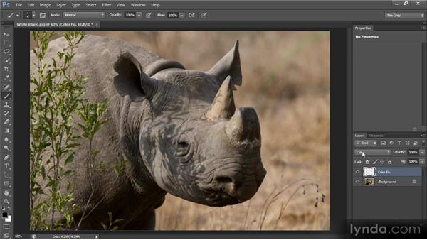 Correcting color contamination: Photoshop CS6 Image Cleanup Workshop