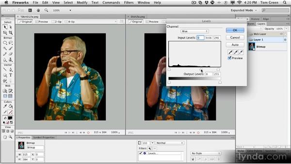 Project: Correcting a Hawaiian shirt: Fireworks CS6 Workshop