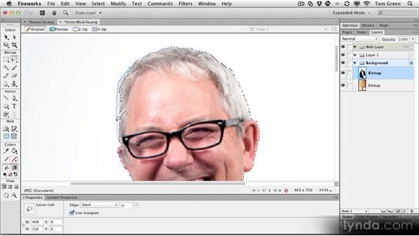 Creating a vector mask: Fireworks CS6 Workshop