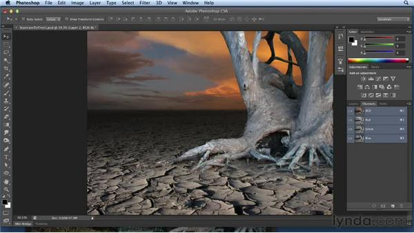 Selecting the tree and compositing: Bert Monroy: Dreamscapes Volume 3