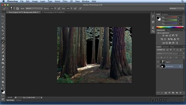 Isolating and compositing the forest: Bert Monroy: Dreamscapes Volume 3