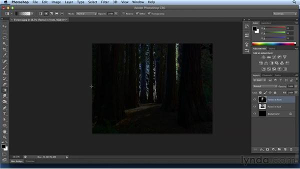 Colorizing the forest: Bert Monroy: Dreamscapes Volume 3