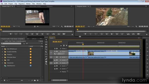 Audio track types: Up and Running with Premiere Pro CS6