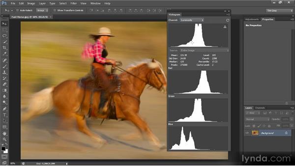 The histogram: Photoshop CS6 Quick Start for Photographers
