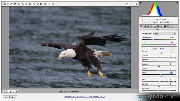 Enhancing RAW images: Photoshop CS6 Quick Start for Photographers