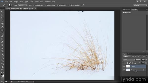 Basic image cleanup: Photoshop CS6 Quick Start for Photographers