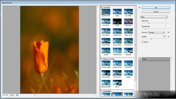 Creative filters: Photoshop CS6 Quick Start for Photographers