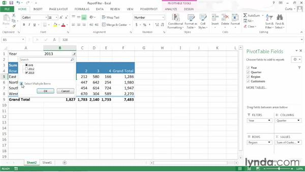 Filtering with report filter fields: Excel 2013: Pivot Tables in Depth