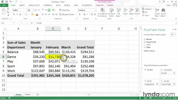 Highlighting the top or bottom values in a PivotTable: Excel 2013: Pivot Tables in Depth