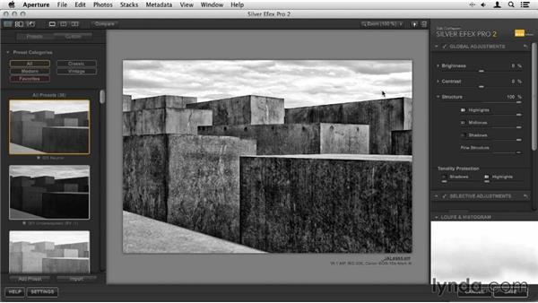 Retouching: Sensor spots: Artist in Action: Joseph Linaschke's Large Scale Black-and-White Photographs