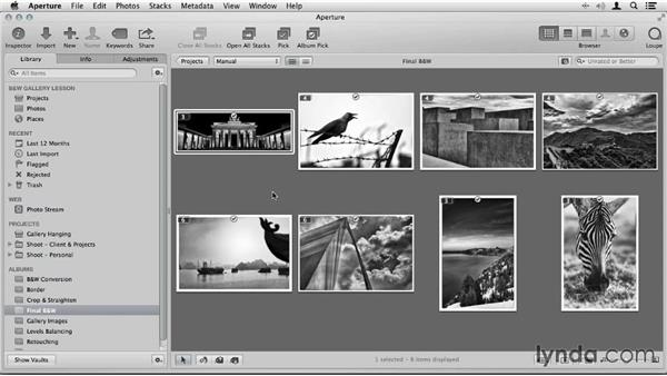 Introduction: Artist in Action: Joseph Linaschke's Large Scale Black-and-White Photographs