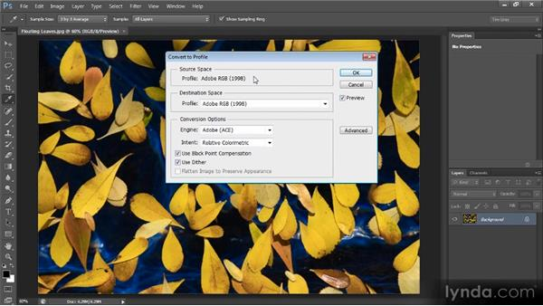 Converting to a profile: Optimal Output with Photoshop CS6