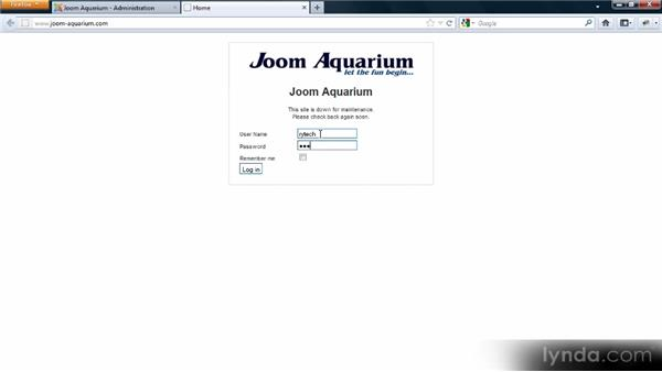 Customizing offline access: Adding Dynamic Functionality to Your Joomla! Site