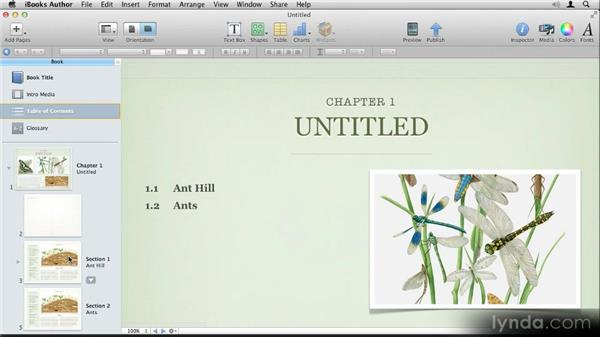 Understanding and adding chapters, sections, and pages: Up and Running with iBooks Author