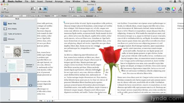 Creating an instant alpha mask: Up and Running with iBooks Author