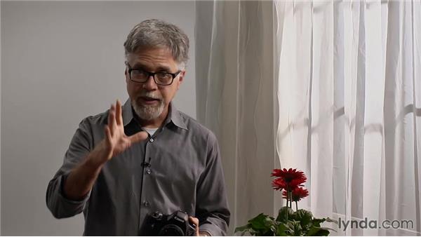 Understanding manual aperture control in bulb mode: Lens-Reversal Macro Photography