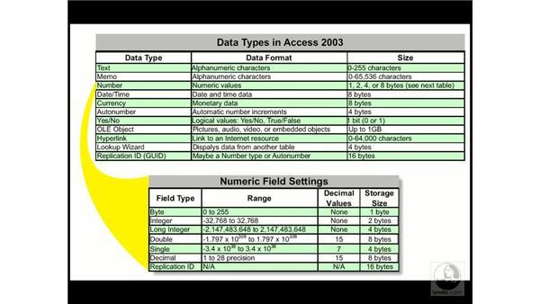data types: Access 2003 Essential Training