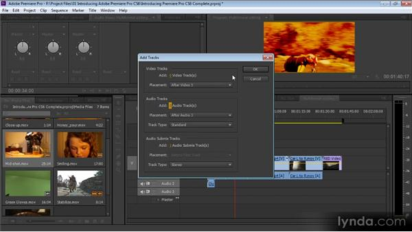 Introducing Adobe Premiere Pro CS6: Premiere Pro CS6 for Avid and Final Cut Pro Editors