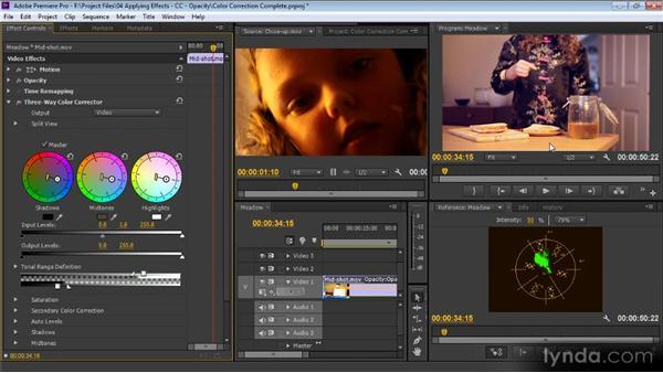 Color correction: Premiere Pro CS6 for Avid and Final Cut Pro Editors