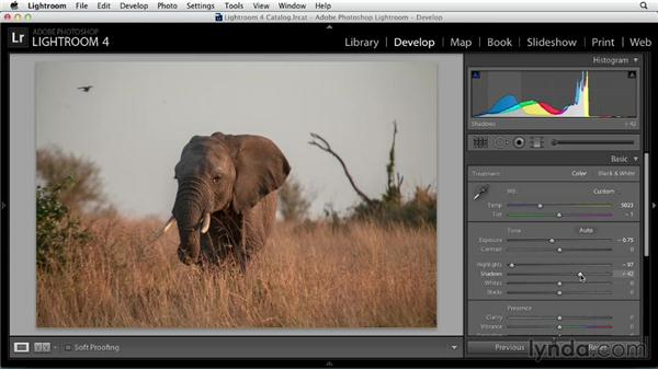 Preparing a color image for black and white: Black and White with Lightroom and Photoshop (2013)