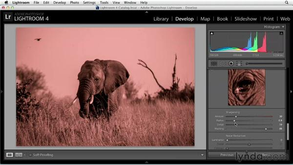 Fine-tuning your image: Black and White with Lightroom and Photoshop (2013)