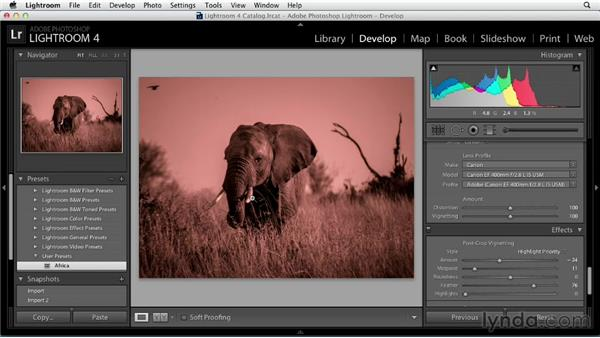 Utilizing presets effectively: Black and White with Lightroom and Photoshop (2013)