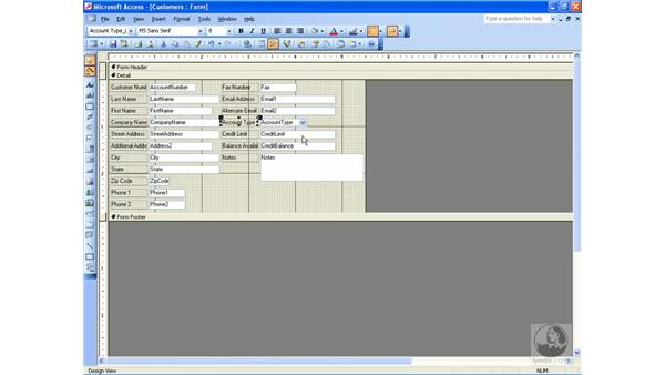control properties: Access 2003 Essential Training