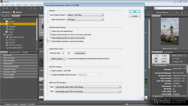 Camera Raw preferences: Bridge CS6 for Photographers