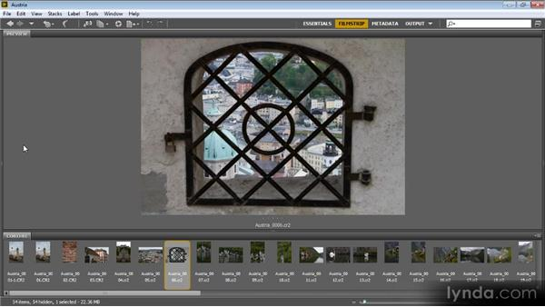 Using workspaces: Bridge CS6 for Photographers