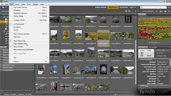 View options: Bridge CS6 for Photographers