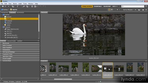 Sorting images: Bridge CS6 for Photographers