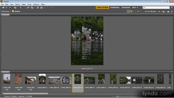 Basic image review: Bridge CS6 for Photographers