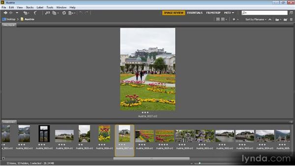 Color labels: Bridge CS6 for Photographers