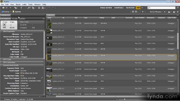Reviewing and updating metadata: Bridge CS6 for Photographers