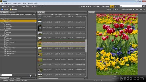 Adding keywords: Bridge CS6 for Photographers
