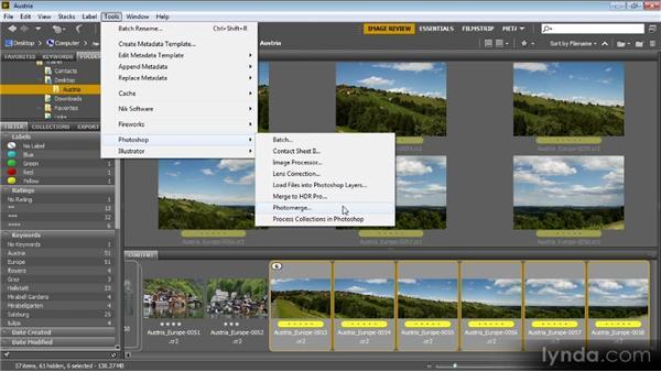 Processing with Photoshop: Bridge CS6 for Photographers