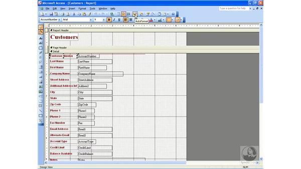 using AutoFormat: Access 2003 Essential Training