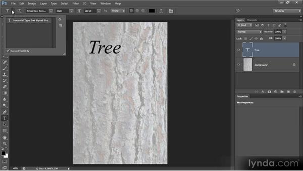 Type tool presets: Photoshop CS6 Text Workshop
