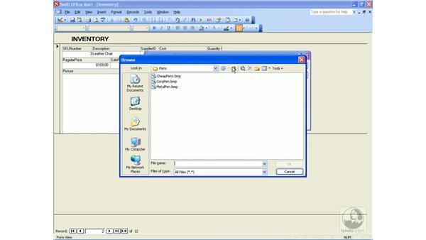 adding graphics: Access 2003 Essential Training