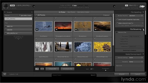 Importing video: Lightroom 4 Video Workshop