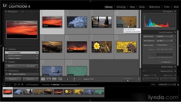 Basic video playback: Lightroom 4 Video Workshop